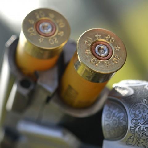 munizioni armeria visentin treviso